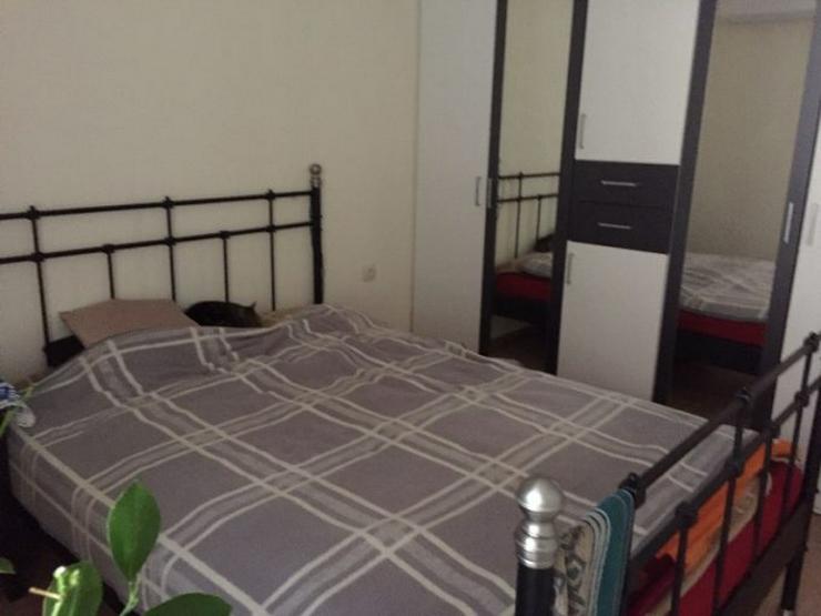 Bild 5: Wohnung zu vermieten in Kurort in Bulgarien