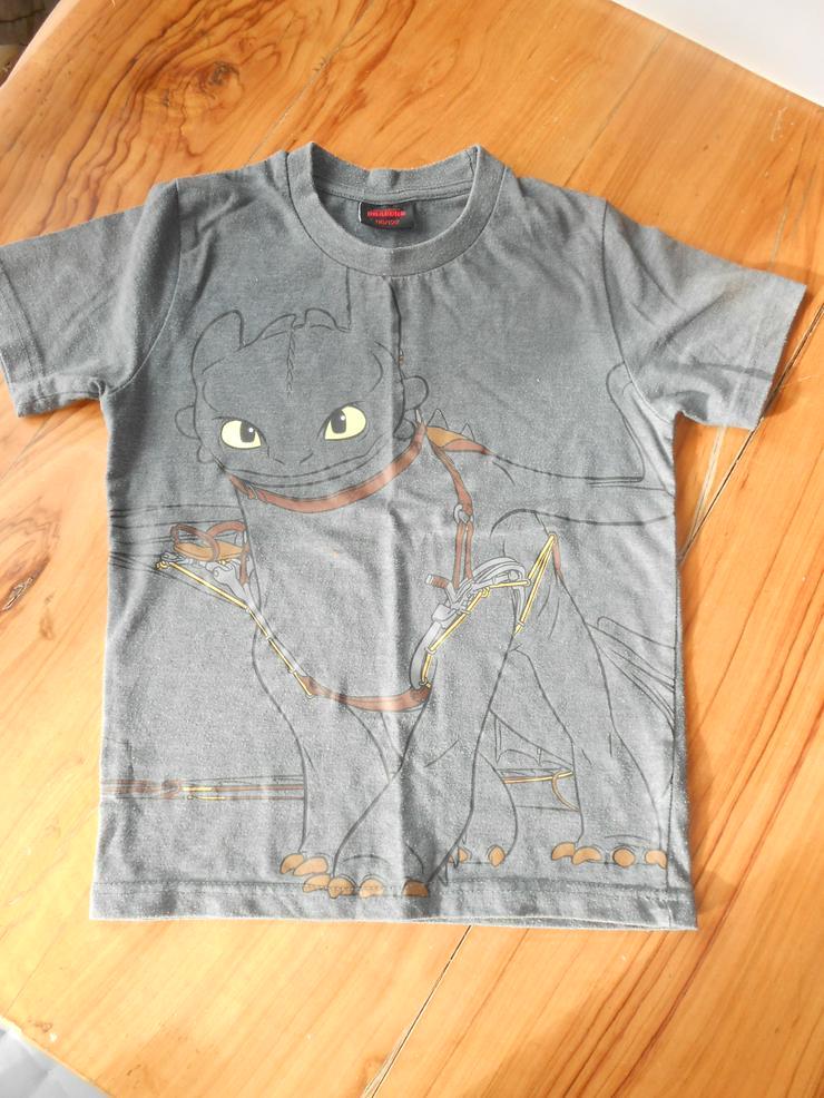 Drachenzähmen leicht gemacht T-Shirts