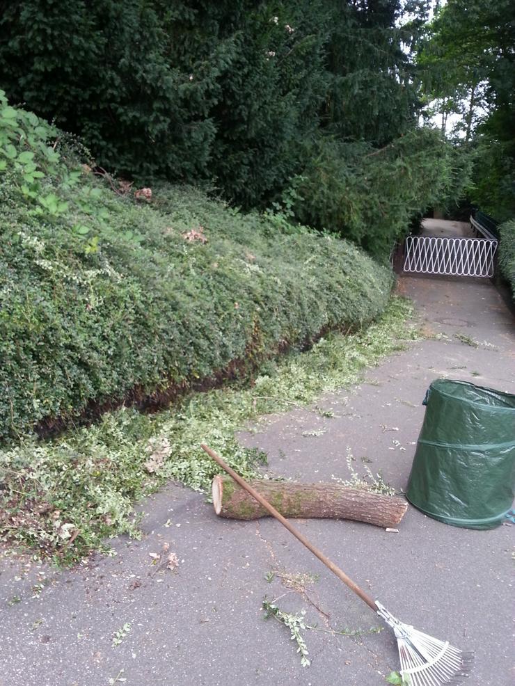 Bild 3: Gartenarbeiten - Gartenpflege, wir sind für Sie da