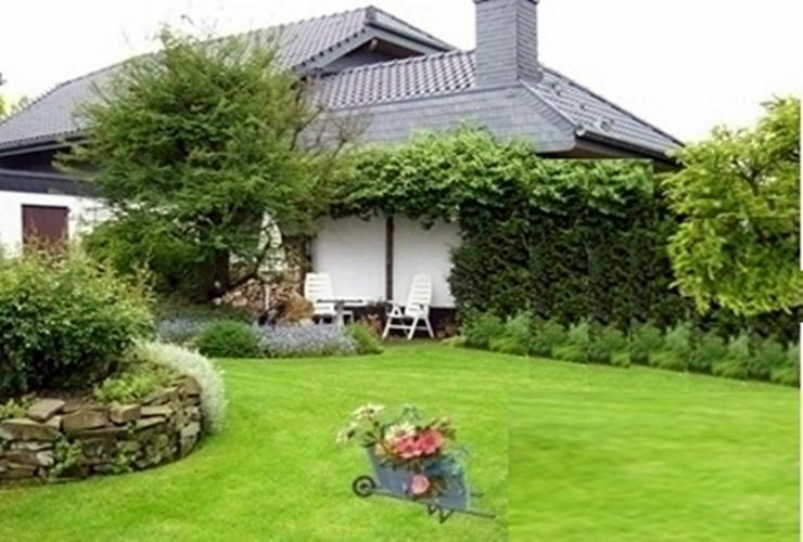 Garten und Landschaftspflege, Pflanzen und Strauchschnitte, HaGa