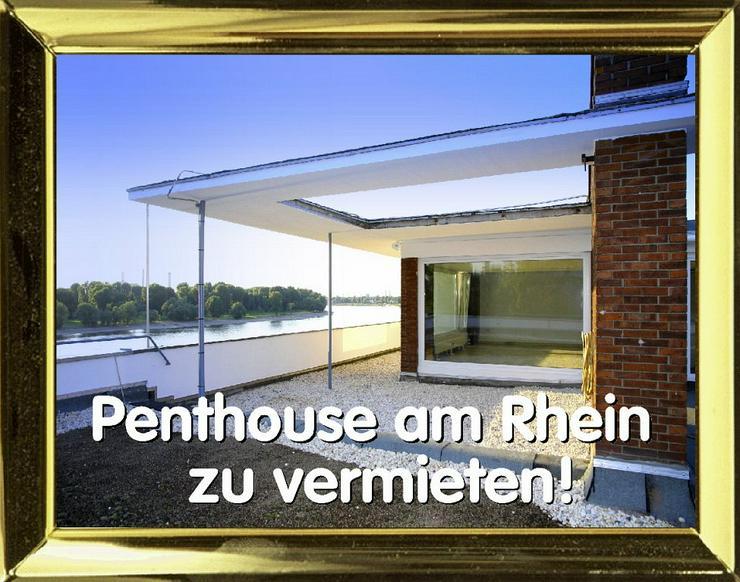 KÖLN - Penthousewohnung mit Blick auf den Rhein zu vermieten!