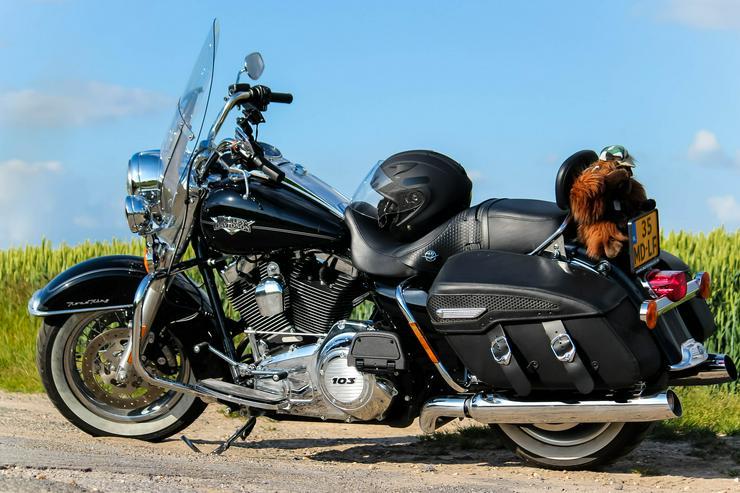 Bild 3: Harley Davidson