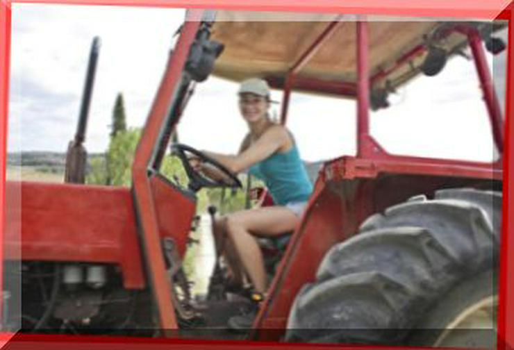 Frau, 26 Jahre, Wirtschafterin auf einem landw. Betrieb