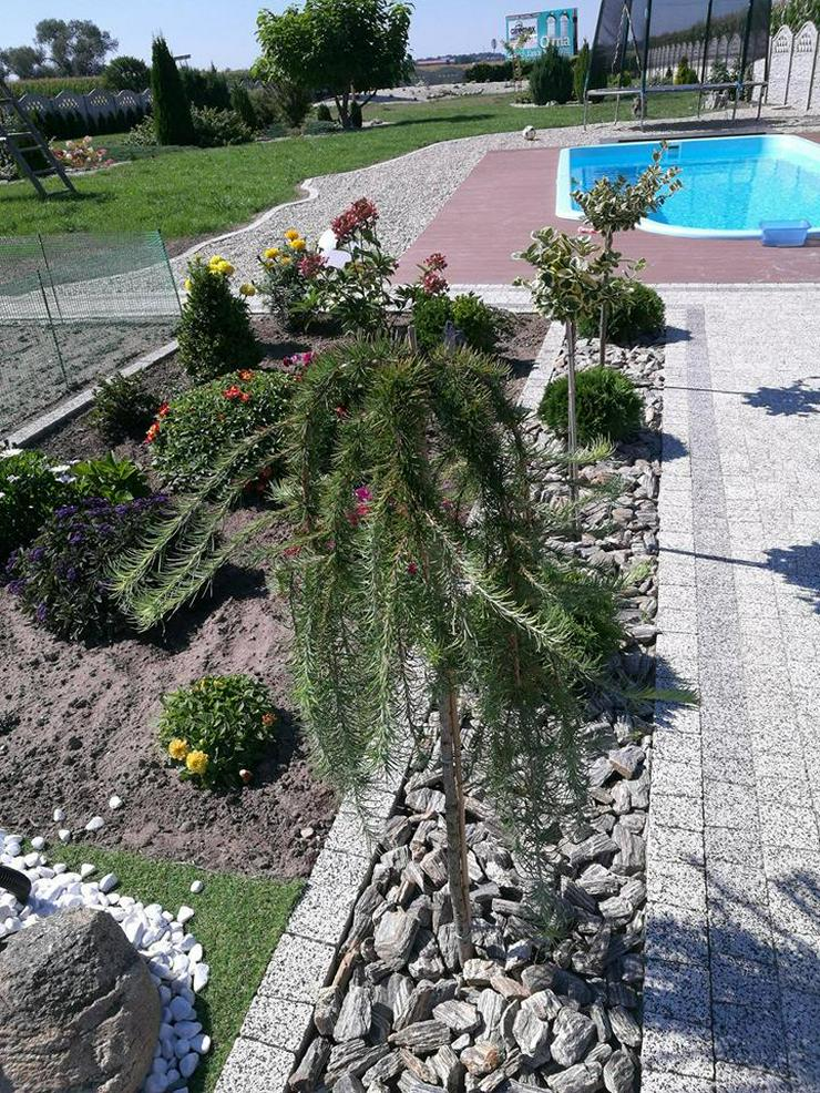 Bild 4: Pool Schwimmbad Schwimmbecken Gartenpool Gfk 7,00x3,00x1,50