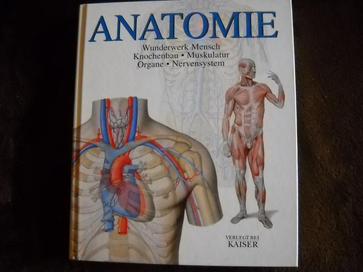 """Buch """"Anatomie - Wunderwerk Mensch""""   zu verkaufen"""