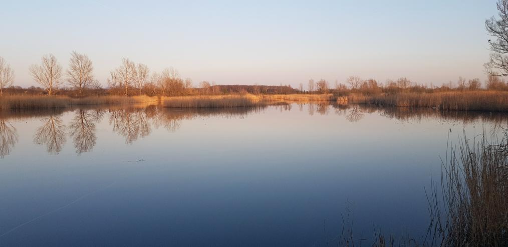 Verkaufe Seegrundstücke in Ungarn