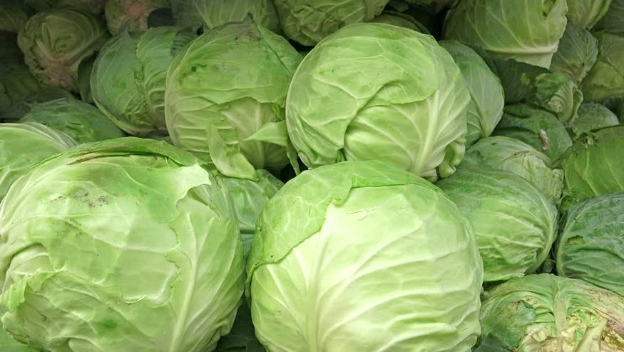 Frische Zwiebeln, Karotten, Ingwer aus Dänemark ....... WhatsApp: 45 36 98 18 23 - Früchte, Gemüse & Pilze - Bild 1