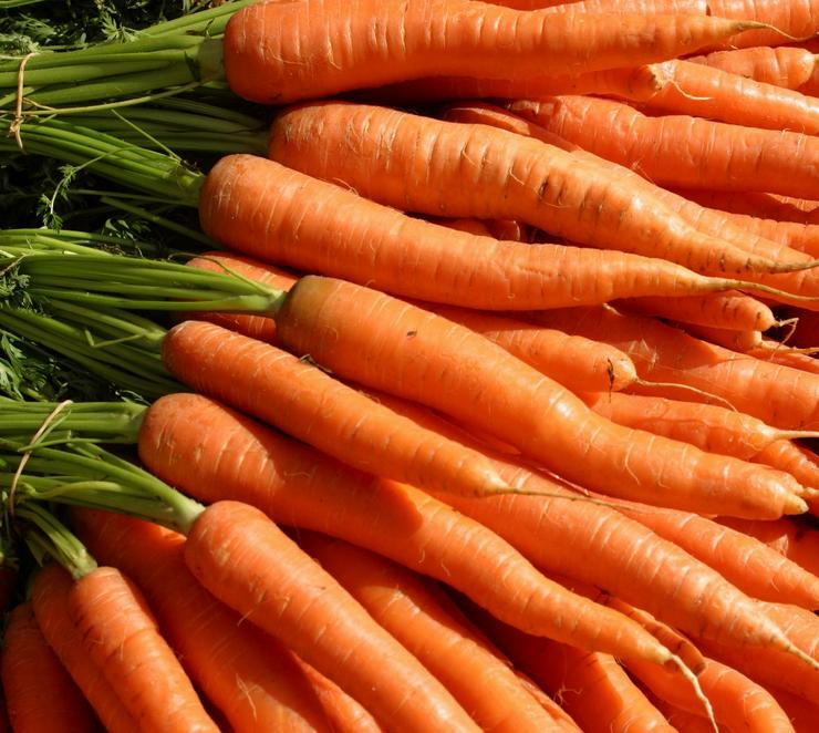 Frische Karotte aus Dänemark - Früchte, Gemüse & Pilze - Bild 1