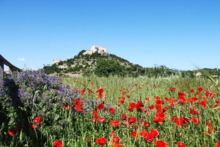 Bild 4: Ferienwohnung im Nordosten von Mallorca