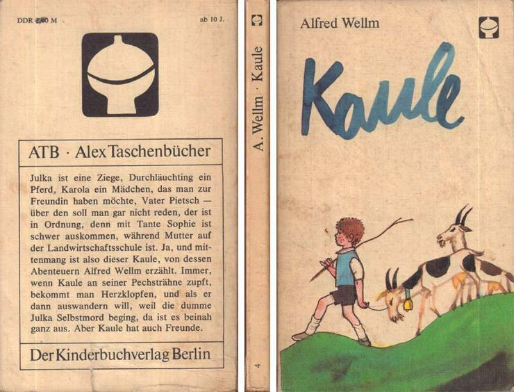 DDR Klassiker von 1962 Taschenbuch Kinderbuch von Alfred Wellm - Kaule