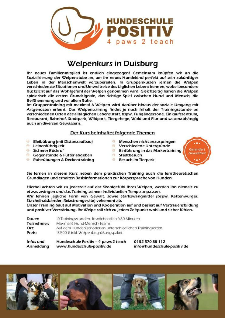 Welpenkurs Welpenschule Welpenstunde Welpentraining Duisburg Moers Rheinberg Kamp-Lintfort Dinslaken Oberhausen