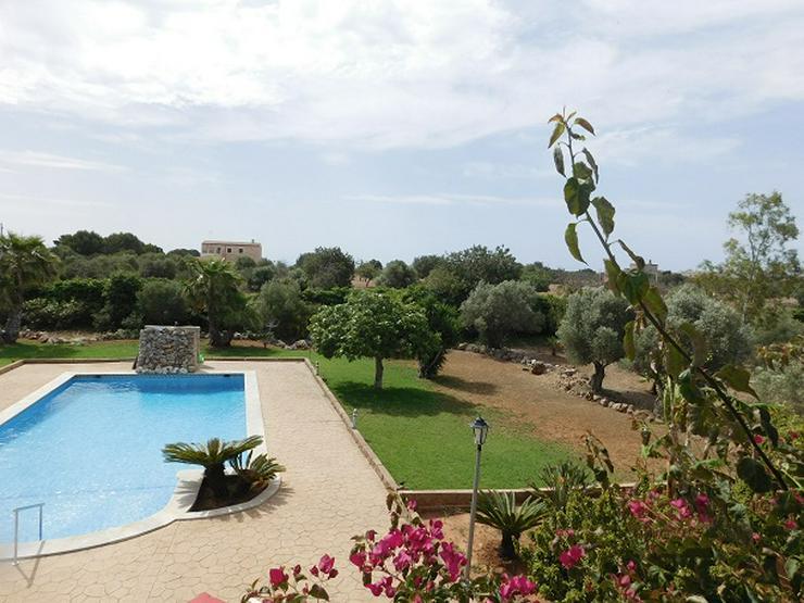 Bild 18: Mallorca Wohnwagen-Wohnmobilstellplätze zur Ferien- oder Langzeitmiete