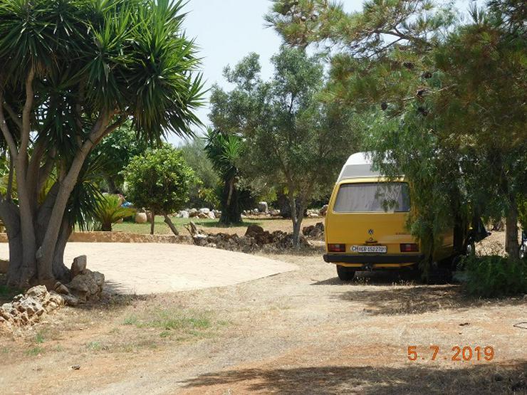Bild 5: Mallorca Wohnwagen-Wohnmobilstellplätze zur Ferien- oder Langzeitmiete