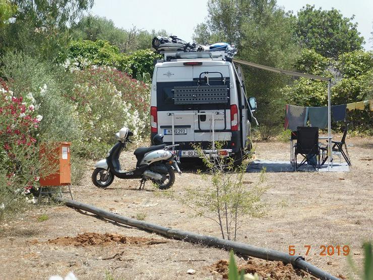Bild 6: Mallorca Wohnwagen-Wohnmobilstellplätze zur Ferien- oder Langzeitmiete