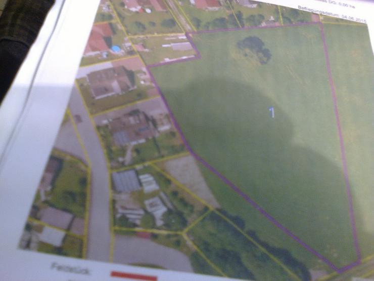 Bild 2: Ortsrandgrundstück mit 2 Bauplätzen