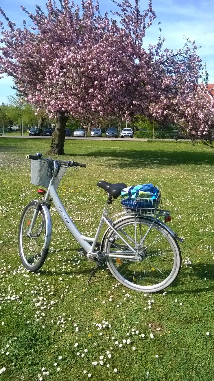 Zwei Damenfahrräder  und ein Kinderfahrrad