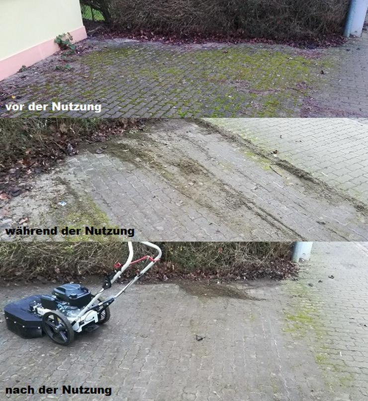 Bild 4: Vermiete Wildkrautbürste / Unkrautbürste ab 20 €