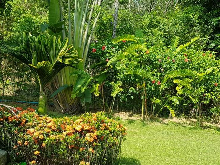 Bild 4: Ferienhaus mit Pool in Khaolak (Thailand) zu vermieten