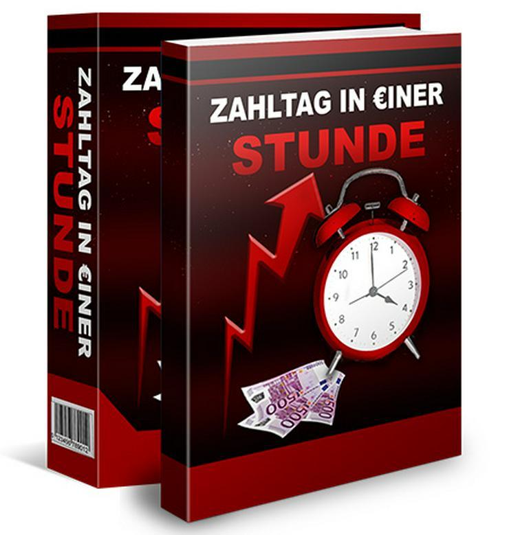 """ebook """"Zahltag in einer Stunde"""" PLR Komplett Paket"""
