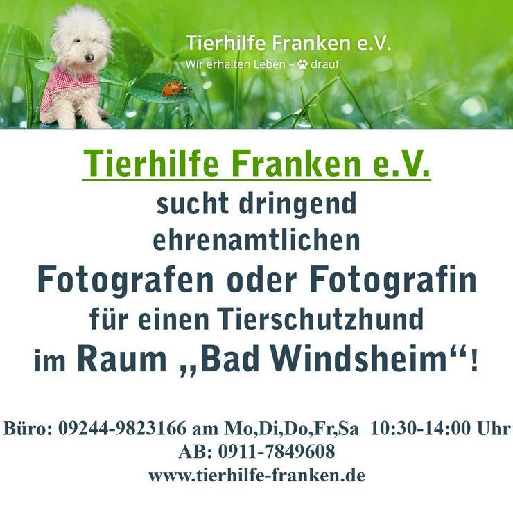 Fotografen/Fotografin ehrenamtlich gesucht!