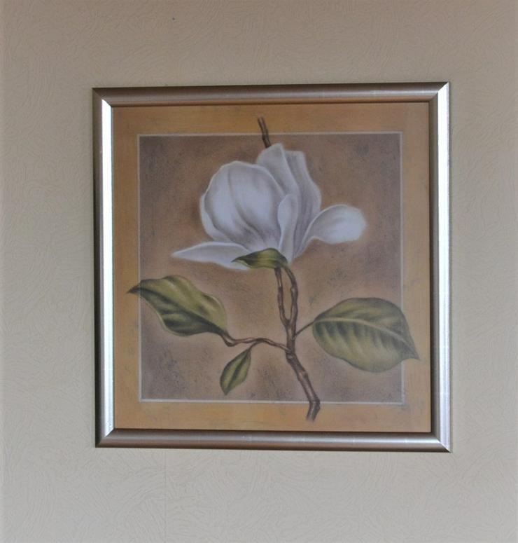 Bild mit weißer Magnolie. Kunstdruck. Mit Rahmen und Glasscheibe.