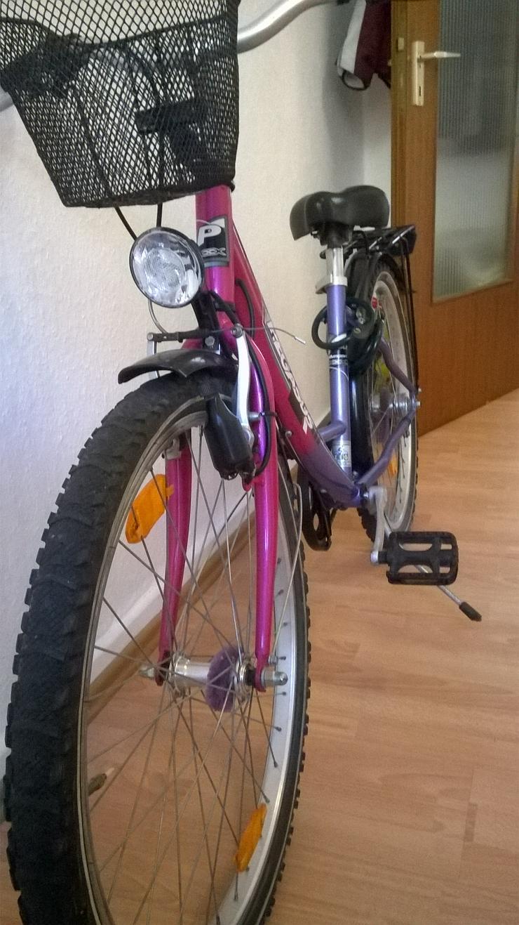 Bild 3: Fahrräder