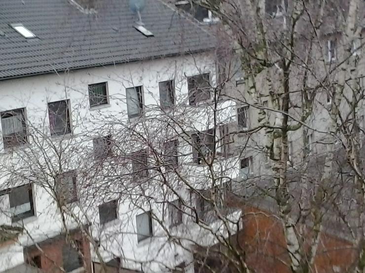 Bild 6: 2 BHK entire Duisburg City Apartment Wohnung EBK