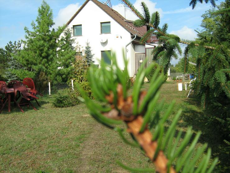 Kecskemét, Ungarn: Familienhaus zu verkaufen