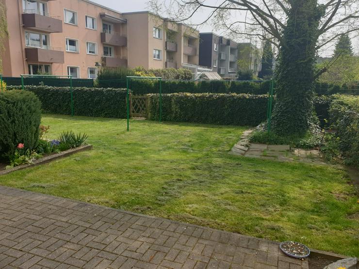 3,5 Zimmer Garten komplett renoviert