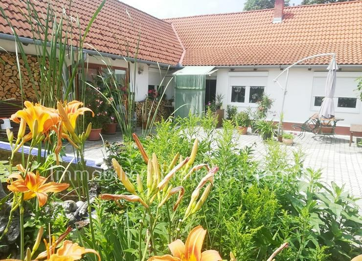 Haus in Ungarn D.Standard, Balaton 5 km, Grdst.1.097m ²Nr.60/60