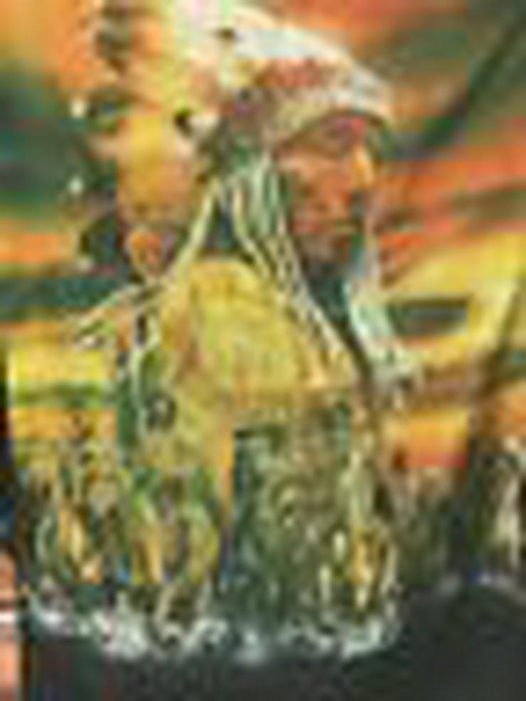 Indianer Fahne mit Sitting Bull Häuptling der Sioux (FP)noch 1 x runter gesetzt !