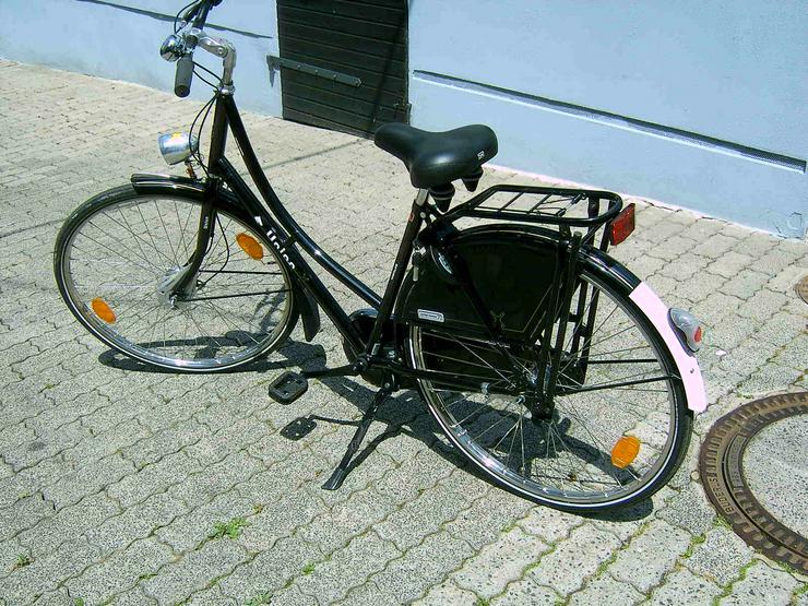 Holland Fahrad