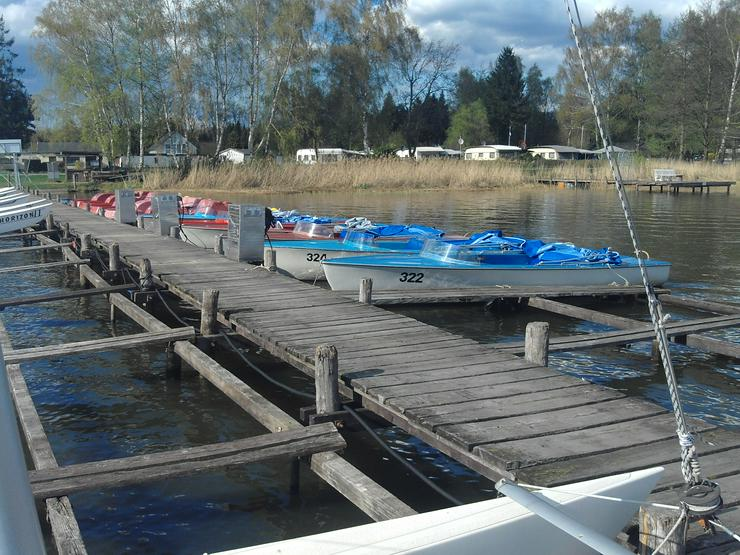Bild 5: Bootsverleih Kielhorn / Steg n 21 3 Std. Elektroboot fahren Steinhuder Meer in Mardorf