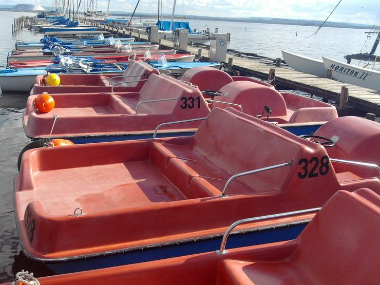 Bild 4: Bootsverleih Kielhorn / Steg N 21 1 Std. Tretboot fahren in Mardorf am Steinhuder Meer