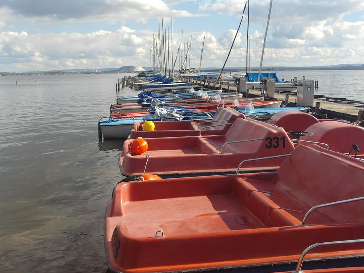 Bild 2: Bootsverleih Kielhorn / Steg N 21 1 Std. Tretboot fahren in Mardorf am Steinhuder Meer