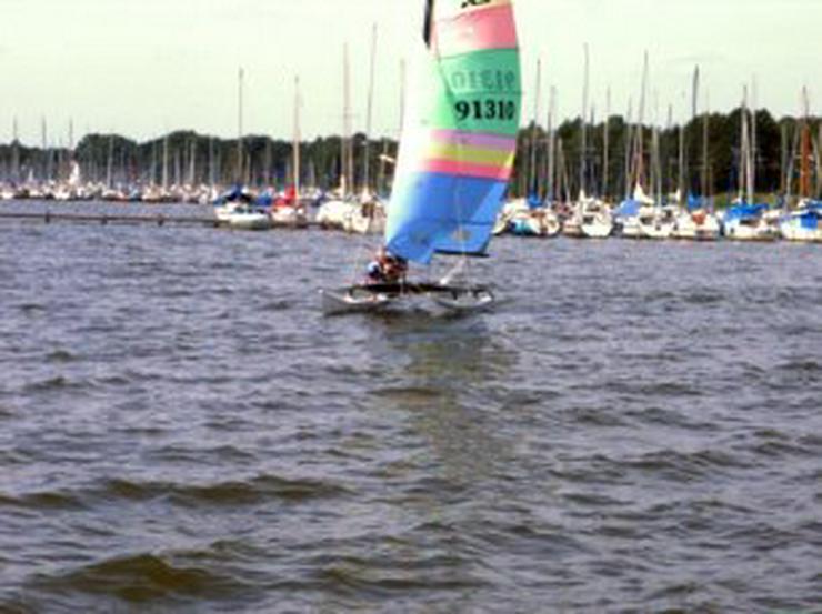 Bootsverleih Kielhorn / Steg N 21  1Tag Hobie Cat 16 segeln auf de Steinhuder Meer