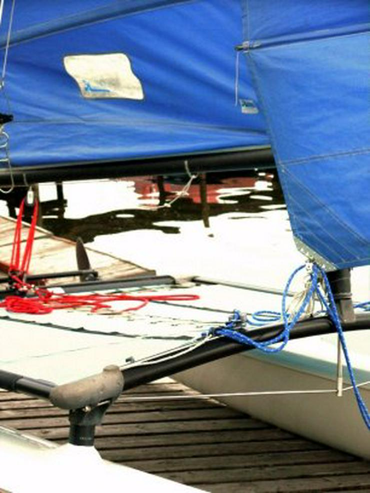 Bild 4: Bootsverleih Kielhorn / Steg N 21  1Tag Hobie Cat 16 segeln auf de Steinhuder Meer