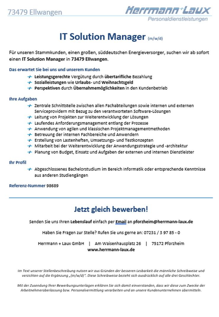 IT Solution Manager (m/w/d)