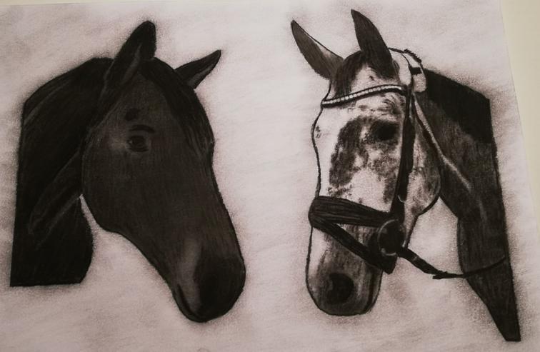 Zeichne Ihren tierischen Liebling in Kohle und Tusche, Zeichnung