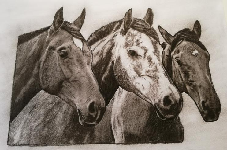 Zeichnung mit Kohle und Tusche zu verkaufen