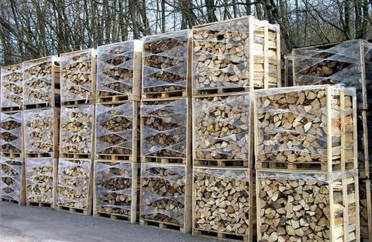Brennholz ab 40 EUR pro m³