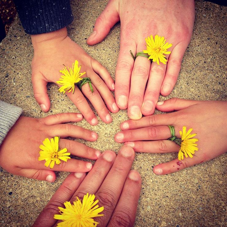 Bild 5: Onlineberatung - Psychologische Beratung, Familiencoach, Trauerbegleitung