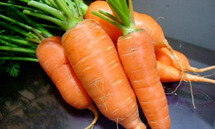 Frische Karotten, Zwiebeln, Kohl steht zum Verkauf