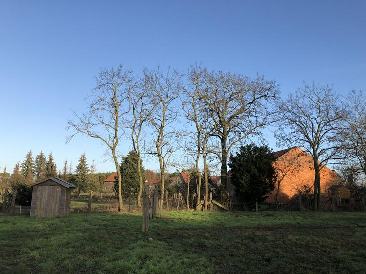 Bild 5: Historisches Schulgebäude mit Nebengelaß in der Altmark nahe Arendsee