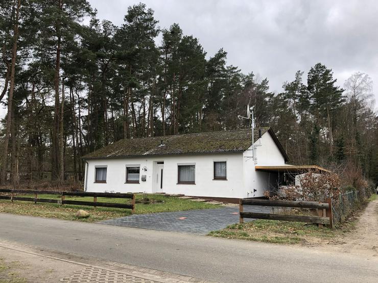 Küsten (Wendland) - Modernisierter Bungalow mit großem Grundstück und Wald - Haus kaufen - Bild 1