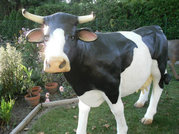 Kuh lebensgroß wie in echt in schwarz-weiss,weiss und braun