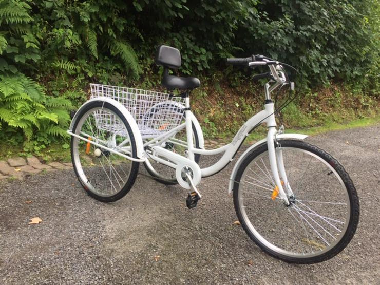 Dreirad-Fahrrad für Freizeit und Einkauf
