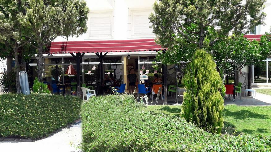 Bild 3: Türkei, Alanya, Luxus Wohnanlage, in der auch Vierbeiner willkommen sind.. 288