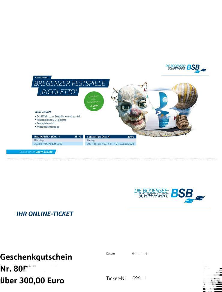 Gutschein im Wert von EUR 300 der Bodensee-Schiff 240 €
