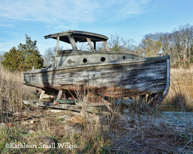 suche günstiges segelboot